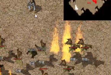 zhaosf小白新手挖矿如何避免被其他玩家截杀?
