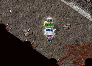 为什么1.80复古组合玩家喜欢去毒蛇